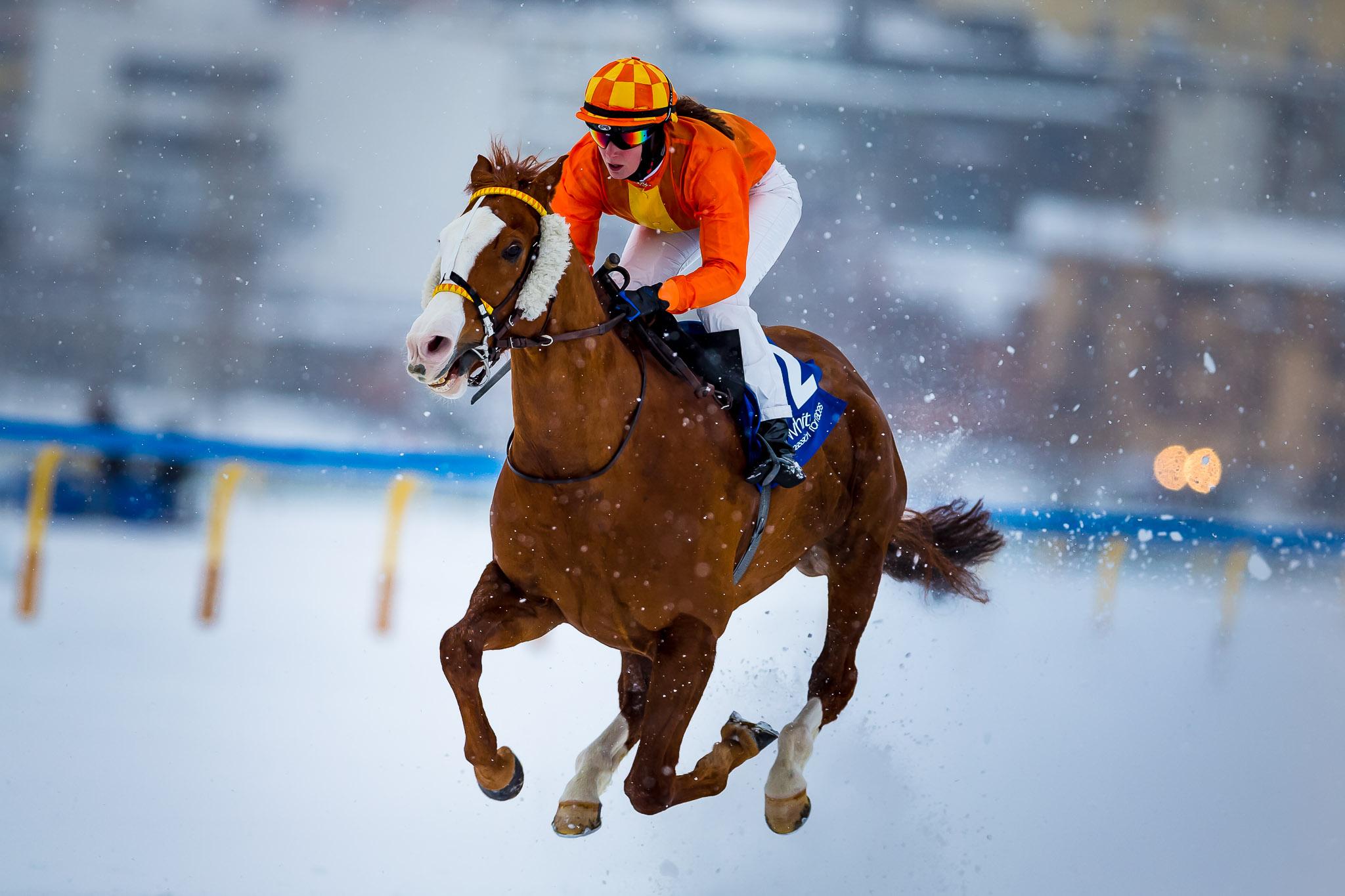 White Turf St.Moritz 2016