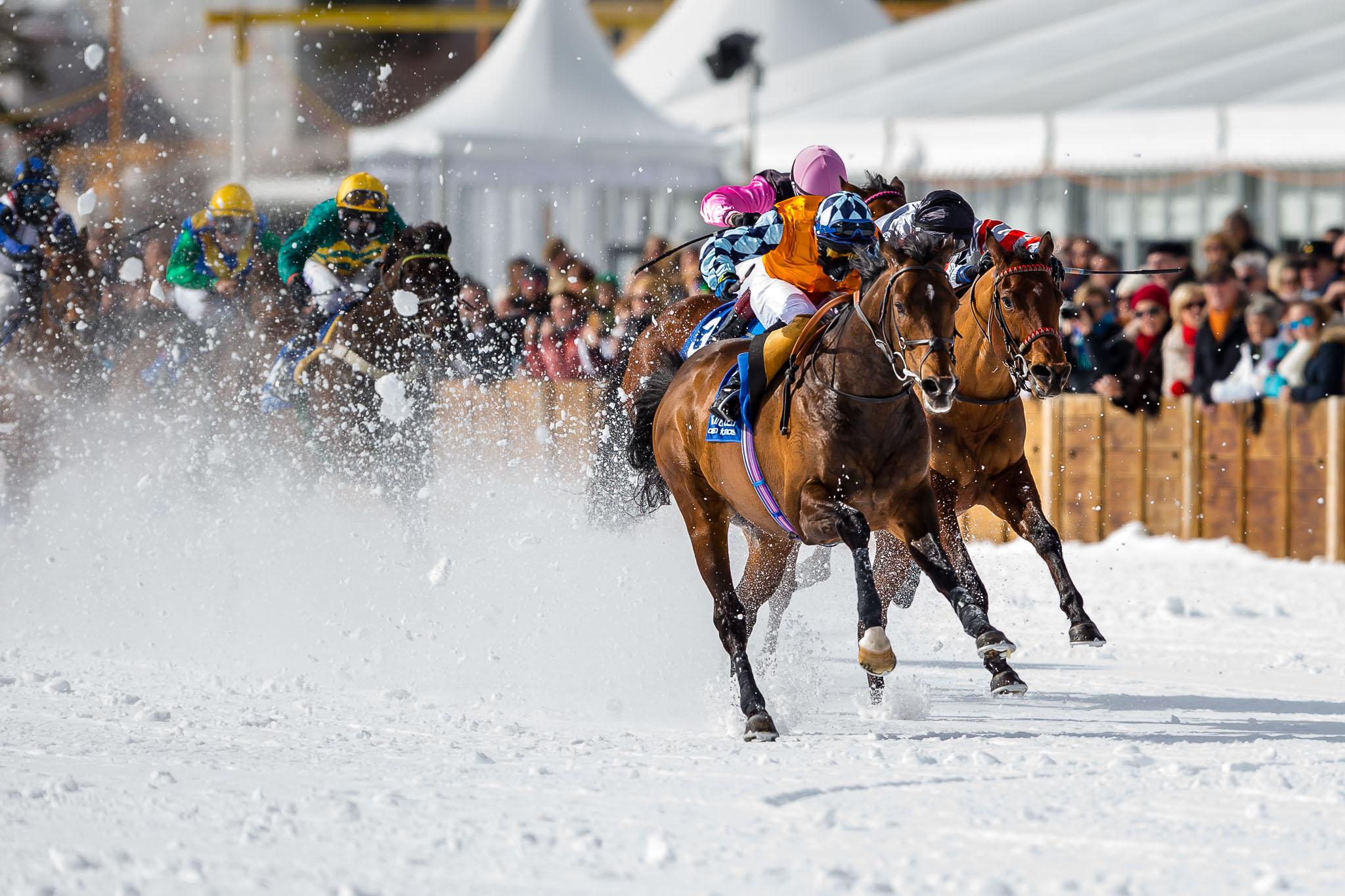 White Turf St.Moritz 2016-9724