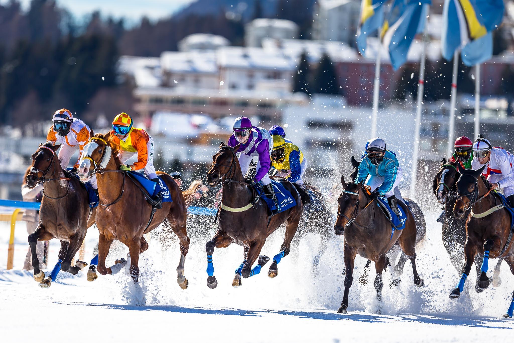 White Turf St.Moritz 2016-9790